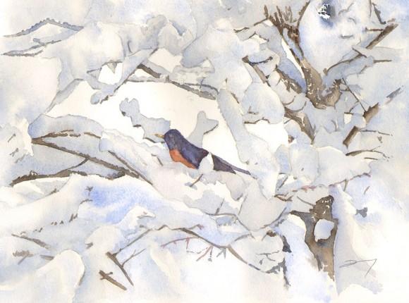 L'oiseau-red