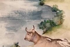 La belle vache !